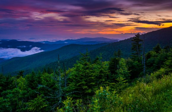 Clingmans Dome Sunset - Smokey Mnts